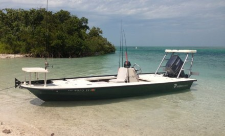 2001 Johnson Tiller Boat For Sale - Exuma Online