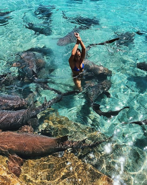 Instagram Model Bitten By Shark in Exuma- Exuma Online
